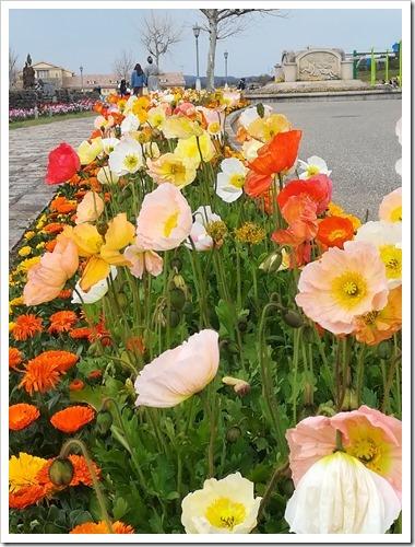 三浦半島の魅力が凝縮された公園!ソレイユの丘ってどんな所?_090219_093945_AM